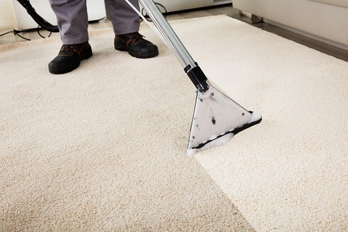 image of professional carpet cleaning