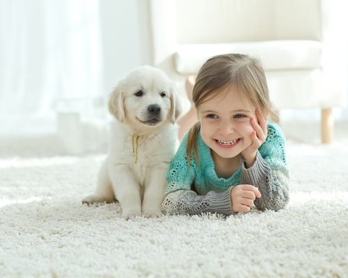 image of a child on the carpet with a puppy